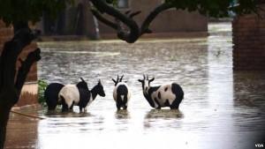 Malawi flood